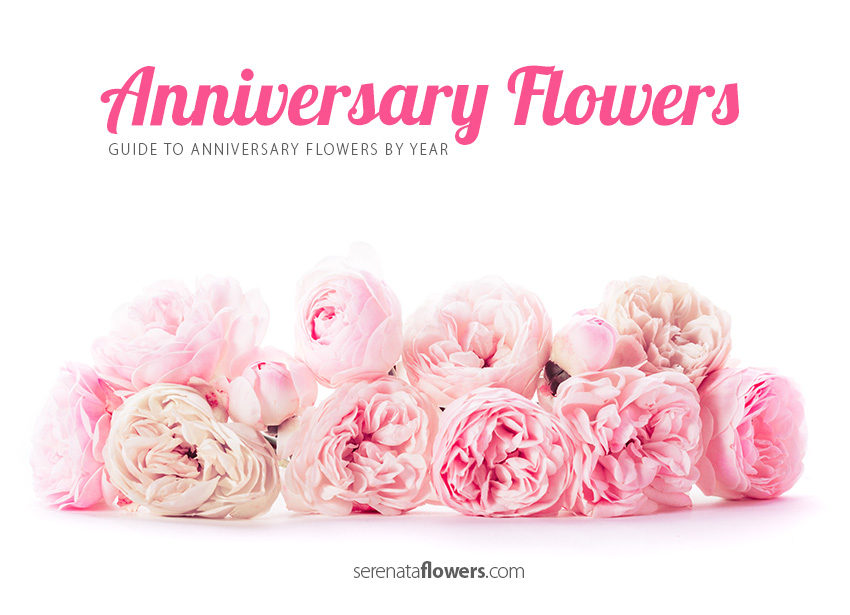 Happy wedding anniversary flowers imgkid the