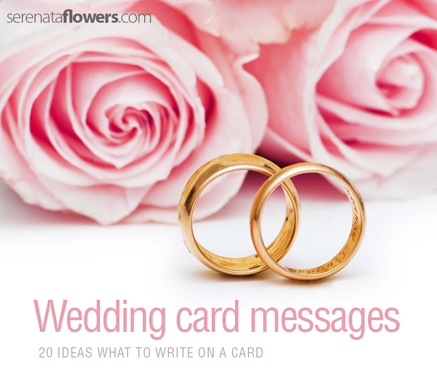 Wedding Gift Message For Honeymoon : Writing a wedding card for a friend? There are plenty of beautiful ...
